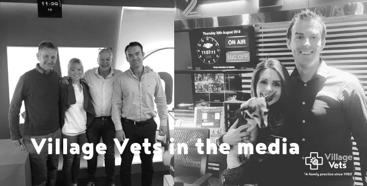 village vets in newstalk, village vets with Nicky Byrne and Jenny Greene