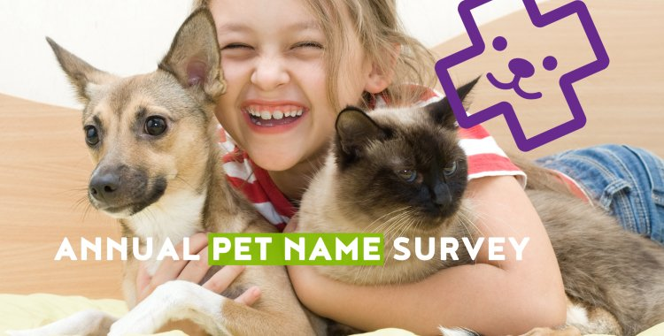pet name survey