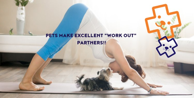 exercise with your pet