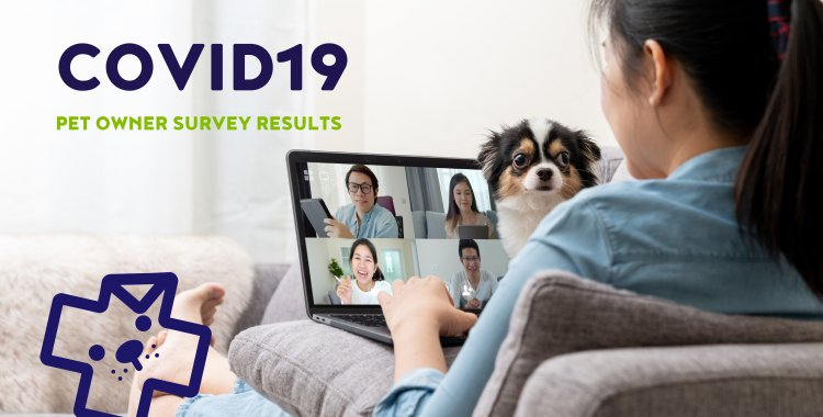 COVID19 SURVEY, COVID UPDATES, COVID INPACT ON PETS
