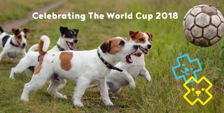 world cup, world cup 2018, world cup ireland