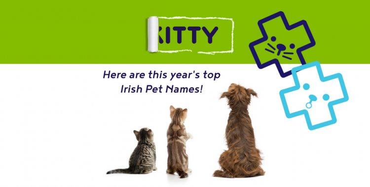 Irish Pet Names