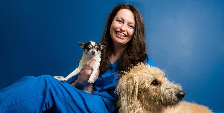 Lavoro con gli animali, veterinario irlanda