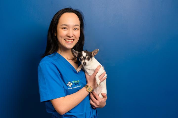 beatrice nuevas, dunshaughlin vets staff