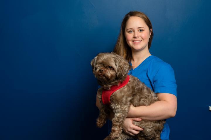 hillcrest vets staff