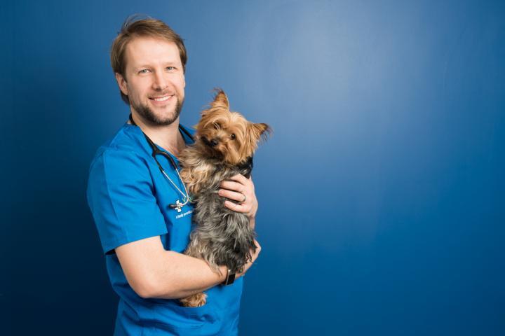 Ian Rountree vet, vet dunshaughlin, vet meath, vet near me