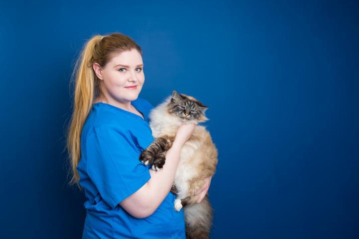 Rebecca Cooke veterinary nurse, vet dundrum, dundrum vets