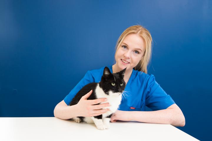 Lisa Colleary head nurse dunboyne, dunboyne vets head nurse
