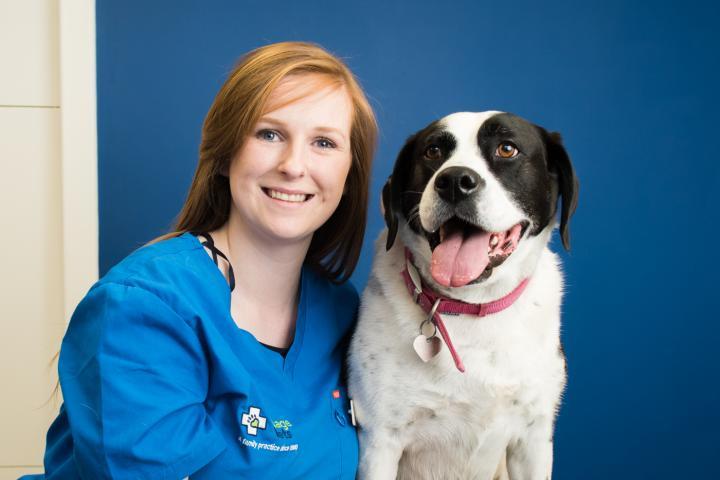 Aisling Carroll veterinary nurse,
