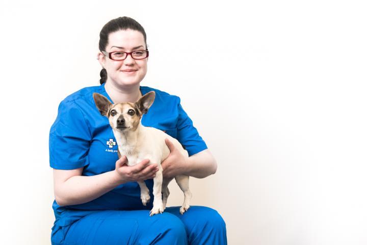 Laura o Toole veterinary nurse, coolock nurses, veterinary nurses dublin