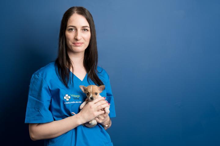 Marie Carr veterinary nurse, village vets team