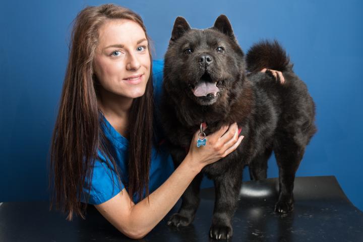 Kim Dolan veterinary nurse, vet nurses southside, vet southside, vet sandyford