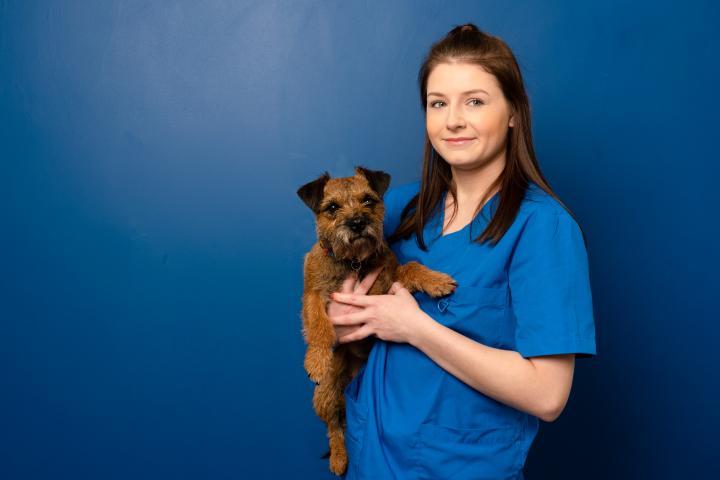 Beaumont vets nurses, beaumont vets staff